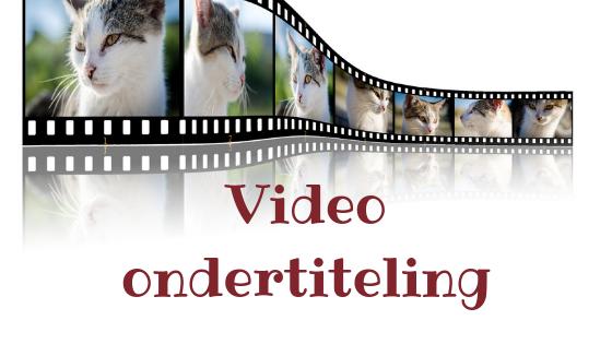 Het waarom en hoe van video ondertiteling